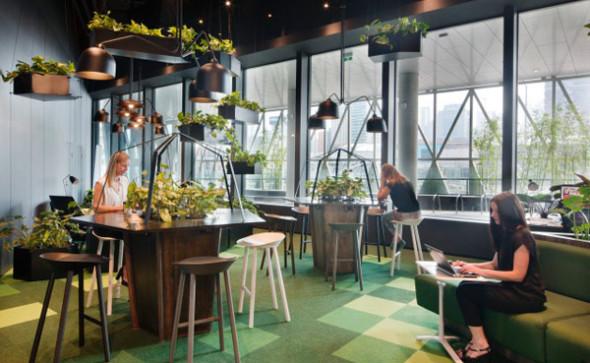 zielona oaza w biurze, projektowanie wnętrz biurowych warszawa